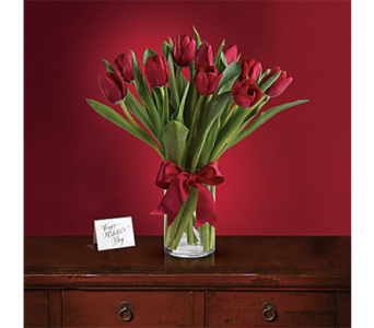 Radiantly Red Tulips in Indianapolis IN, George Thomas Florist
