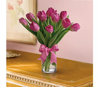 Precious Pink Tulips in Indianapolis IN, George Thomas Florist