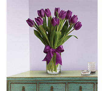 Passionate Purple Tulips in Indianapolis IN, George Thomas Florist