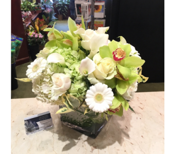 Royal Green Harmony in Princeton, Plainsboro, & Trenton NJ, Monday Morning Flower and Balloon Co.
