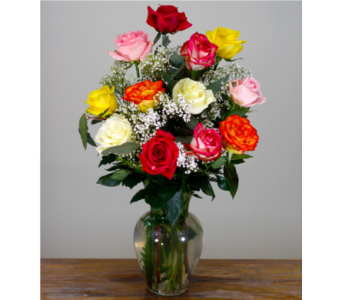 Dozen Assorted Roses  in Merrick NY, Feldis Florists