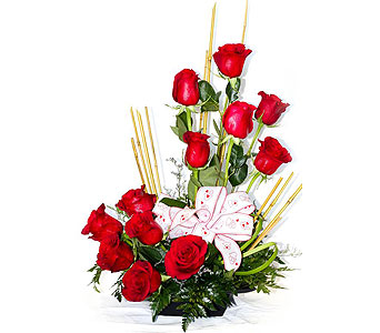 Xpressions of love in San Antonio TX, Xpressions Florist