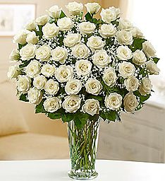 Ultimate Elegance� Premium Long Stem White Roses in Jupiter FL, Anna Flowers