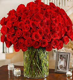 100 Premium Long Stem Red Roses in a Vase in Jupiter FL, Anna Flowers