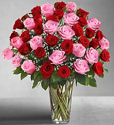 Ultimate Elegance� Long Stem Pink & Red Roses in Jupiter FL, Anna Flowers