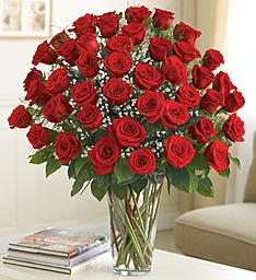 Ultimate Elegance� Premium Long Stem Red Roses in Jupiter FL, Anna Flowers