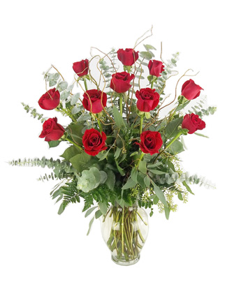 One dozen premium 'Corazon' roses. in Fort Myers FL, Fort Myers Florist, Inc.