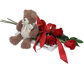 3 Red Roses, Teddy and Chocolates in Miramichi NB, Country Floral Flower Shop