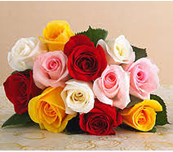 12 Mixed Roses Wrapped in Miramichi NB, Country Floral Flower Shop
