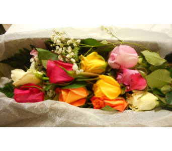 Two Dozen Pastel Roses Boxed in Skowhegan ME, Boynton's Greenhouses, Inc.