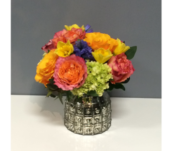 Bright   Colorful in Thornhill ON, Orchid Florist
