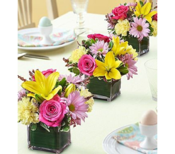 Easter Celebrations Centerpiece in Princeton, Plainsboro, & Trenton NJ, Monday Morning Flower and Balloon Co.