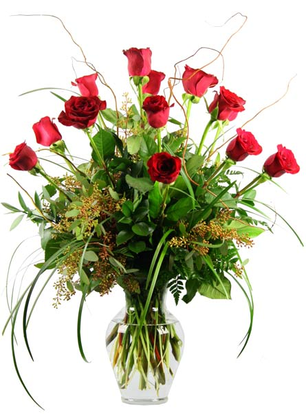 One dozen premium 'Corazon' roses. in Smithtown NY, James Cress Florist