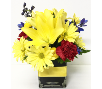 Bright with Black 4x4 Cube - Designed All-Around in Wyoming MI, Wyoming Stuyvesant Floral