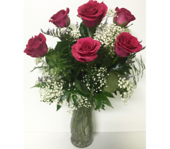 6 Hot Pink Roses Arrangement in Wyoming MI, Wyoming Stuyvesant Floral