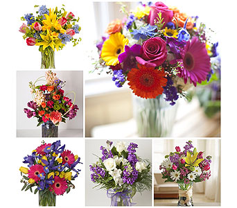 Designers Choice - Spring Mix in Harrisonburg VA, Blakemore's Flowers, LLC