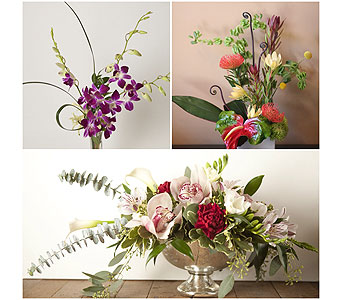 Designers Choice - Artistic Creation in Harrisonburg VA, Blakemore's Flowers, LLC