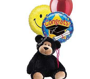Medium Congratulations Bear 2 in 1-800 Balloons NV, 1-800 Balloons