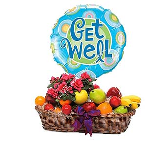 Plant And Fruit Basket by 1-800-balloons