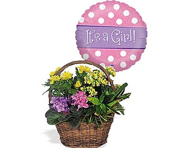 Petite European Basket w/Balloon by 1-800-balloons
