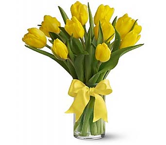 Sunny Yellow Tulips by 1-800-balloons
