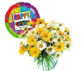 Dashing Daisies Flowers And Ba by 1-800-balloons