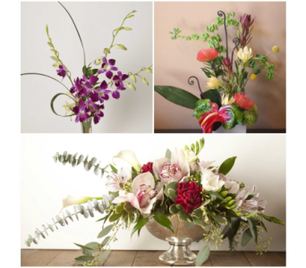 Designers Choice- Artistic Creation    in Harrisonburg VA, Blakemore's Flowers, LLC