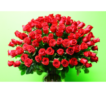 100 Red Roses  in Tyler TX, Country Florist & Gifts