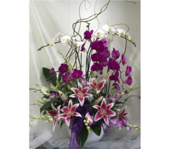 Planter with Orchids in Sunnyvale CA, Flowers By Sophia