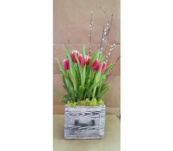 A Touch of Spring in Sioux Falls SD, Cliff Avenue Florist