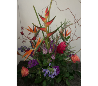 Tropics of Valentines in Mequon WI, A Floral Affair, Inc