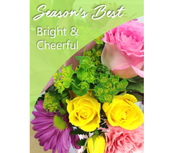 Season's Best Bright & Cheerful in Fargo ND, Dalbol Flowers & Gifts, Inc.