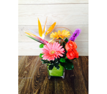 Custom arrangment in Rockville MD, Flower Gallery