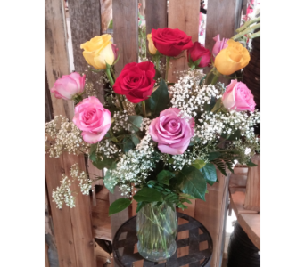One Dozen mixed colored roses  in Longmont CO, Longmont Florist, Inc.