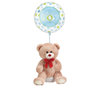 Teddy Bear for a Baby Boy w/ Balloom in Princeton, Plainsboro, & Trenton NJ, Monday Morning Flower and Balloon Co.