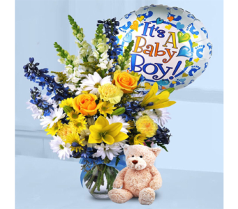 Baby Boy Surprise! in Indianapolis IN, George Thomas Florist