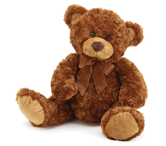 Joshua Bear in Princeton, Plainsboro, & Trenton NJ, Monday Morning Flower and Balloon Co.