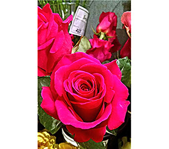 Hot Pink Floyd Roses in Massapequa Park NY, Bayview Florist & Montage  1-800-800-7304