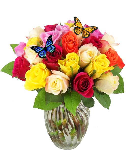 Heart''s a Flutter Roses in Fort Myers FL, Fort Myers Florist, Inc.