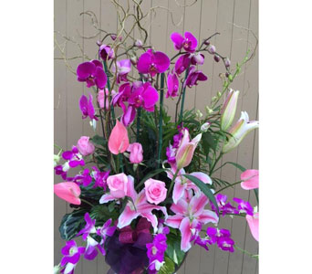 Planter with Orchids, Anthurium, Roses in Sunnyvale CA, Flowers By Sophia