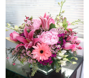 Lovely & Luxurious in Indianapolis IN, George Thomas Florist