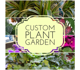 Custom Plant Garden in Princeton, Plainsboro, & Trenton NJ, Monday Morning Flower and Balloon Co.