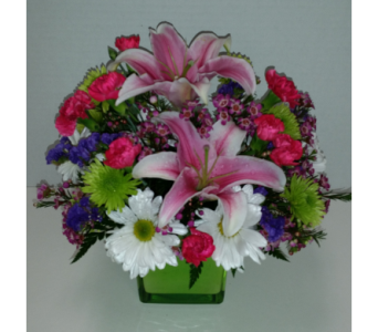 Touch of Spring in Raleigh NC, Gingerbread House Florist - Raleigh NC