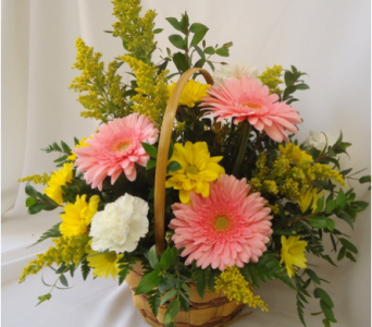 Pink Gerbera Daisy Basket in Saratoga Springs NY, Dehn's Flowers & Greenhouses, Inc