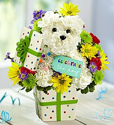 Party Pooch in Port Charlotte FL, Punta Gorda Florist Inc.