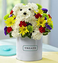 Dogable in Tin in Port Charlotte FL, Punta Gorda Florist Inc.
