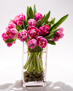 Fashionably Pink in New York NY, Starbright Floral Design