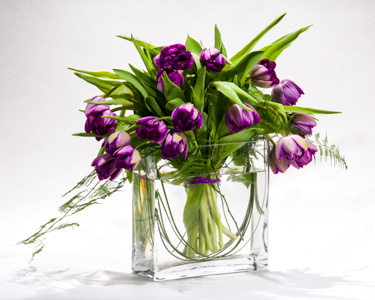 Pretty in Purple in New York NY, Starbright Floral Design