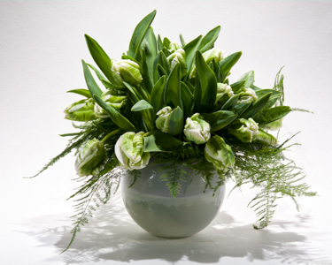 Green Forest Smiles in New York NY, Starbright Floral Design