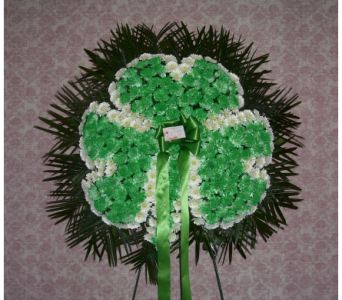 Shamrock in Yonkers NY, Hollywood Florist Inc